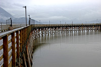 April Showers- by John Gallant